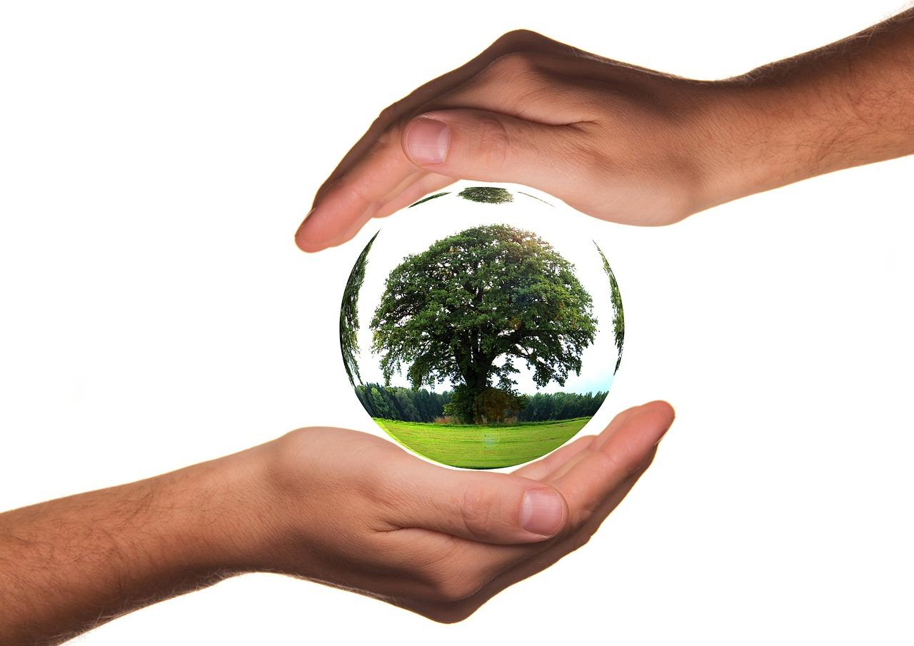 4 façons de contribuer à la protection de l'environnement